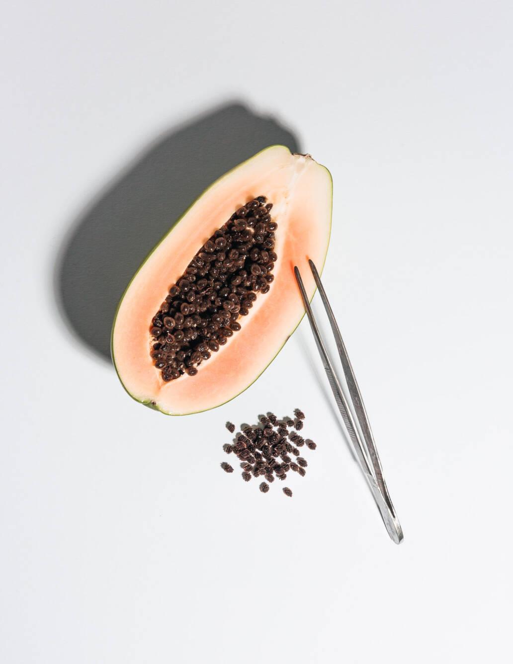 Food Fraud – Editorial Still Life Photography – Fake Pepper