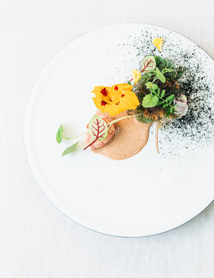 Crayfish & heirloom tomatoes Food Still Life at Restaurant Sühring